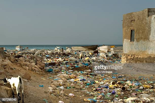 A beach in Somalia Covered with Plastic Bags and Trash