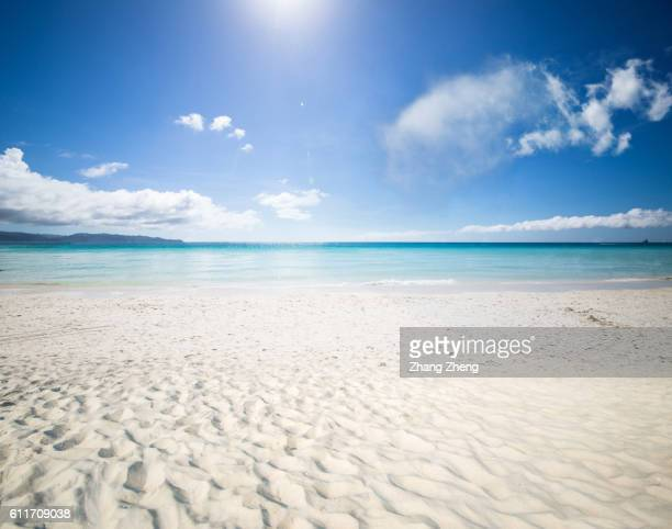 beach in the sun
