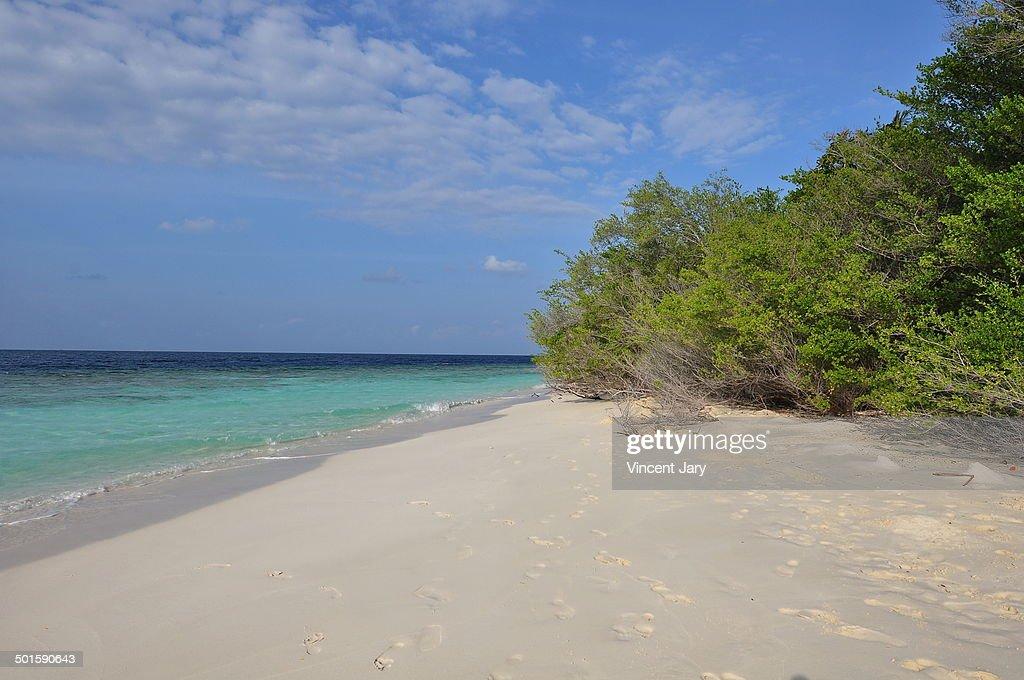 Beach island : Photo
