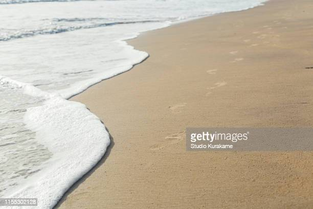beach, kribi, cameroon - espuma sintética - fotografias e filmes do acervo