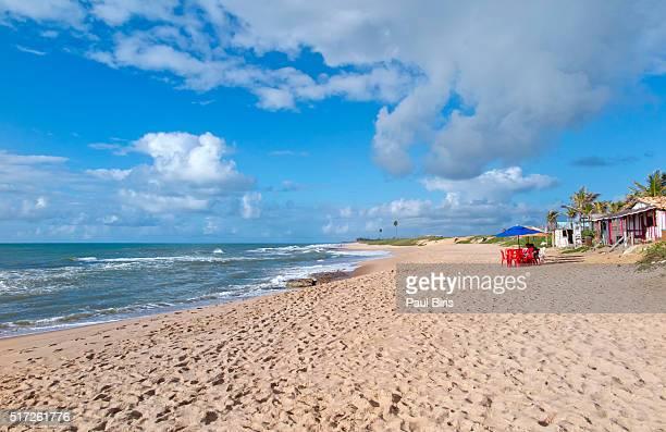 Beach landscape in the north coast of Bahia, Costa do Sauipe, Brazil