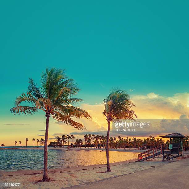 beach miami - miami florida stock pictures, royalty-free photos & images