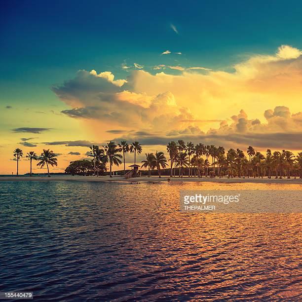 beach miami