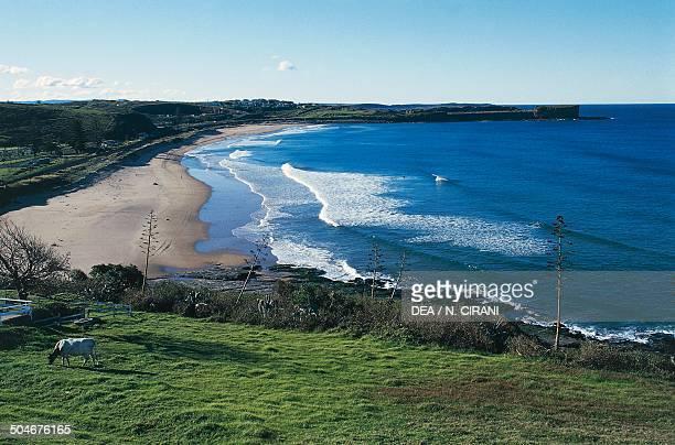 Beach near Kiama Tasman Sea New South Wales Australia