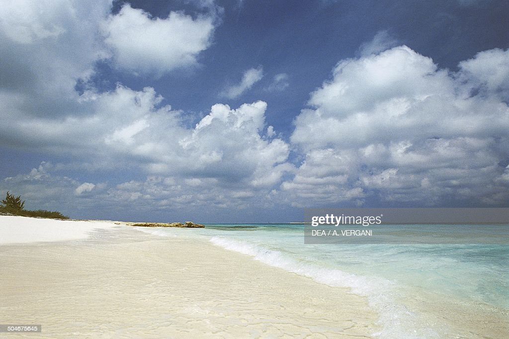Beach north of George Town, Great Exuma, The Bahamas  News
