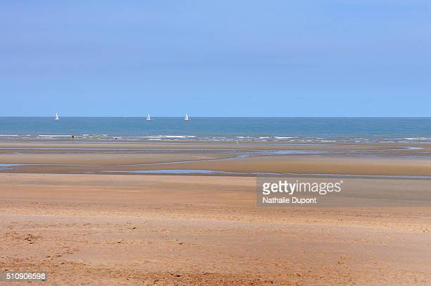beach of bray dunes - marée stock pictures, royalty-free photos & images