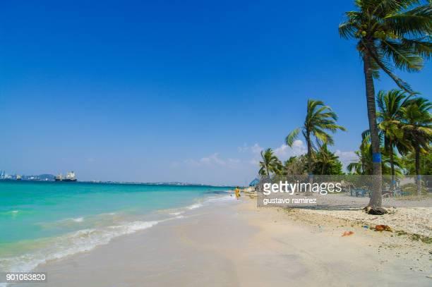 beach of caribbean island of tierra bomba - cartagena colombia fotografías e imágenes de stock