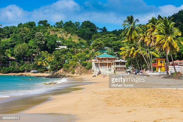 beach of castara,tobago, trinidad and tobago, west indies, caribbean, central america - tobago stock pictures, royalty-free photos & images