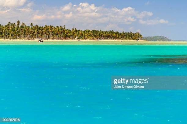 beach of laje (praia do laje)  in porto de pedras city - alagoas state - brazil - laje stock pictures, royalty-free photos & images