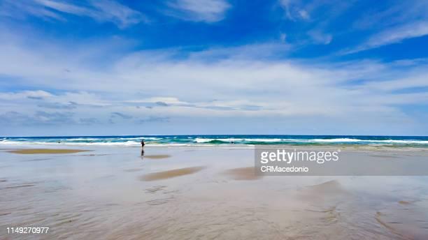 a beach of my own. - crmacedonio imagens e fotografias de stock
