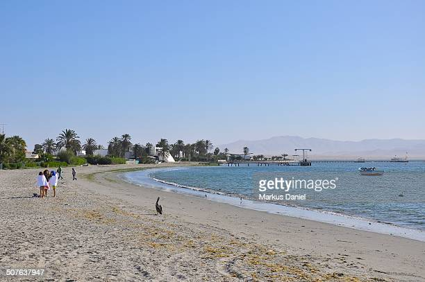 "beach of paracas, peru - ""markus daniel"" stock pictures, royalty-free photos & images"