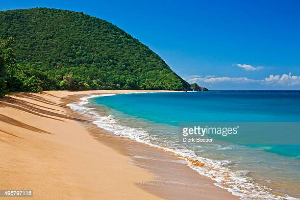 Beach of Plage de Grande Anse, Deshaies, Arrondissement of Basse-Terre, Guadeloupe, France