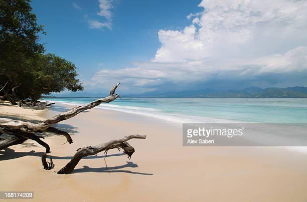 a beach on gili trawangan, the largest of the gili islands. - alex saberi fotografías e imágenes de stock