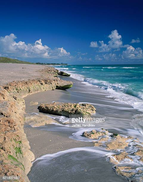 beach on jupiter island - jupiter island florida stock photos and pictures