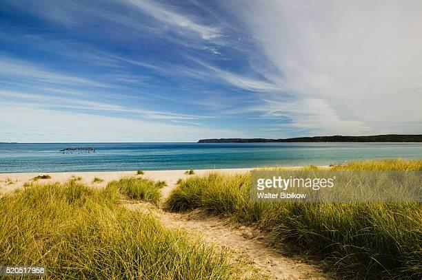 beach on lake michigan - lake michigan stock pictures, royalty-free photos & images