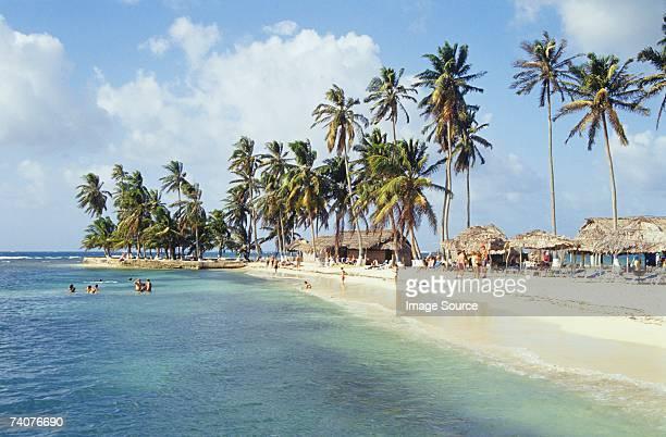 beach on san blas islands - panama stock photos and pictures