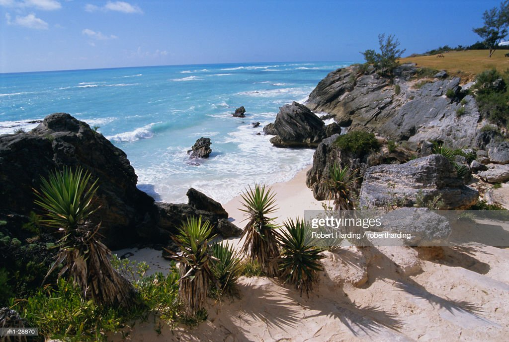 Beach on south coast, Bermuda, Central America : Foto de stock