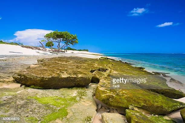 Beach on Sumba