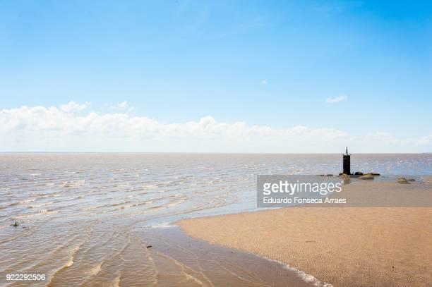 beach on the amazon river - amapá state ストックフォトと画像