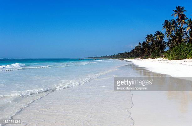a beach on the east coast of tanzinia, zanzibar - zanzibar island stock photos and pictures