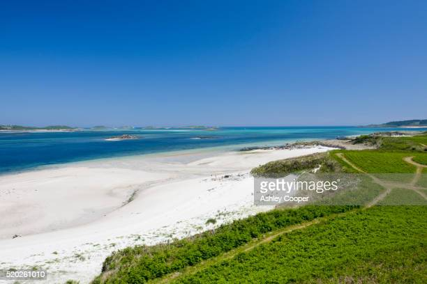 beach on the island of tresco - isles of scilly stock pictures, royalty-free photos & images