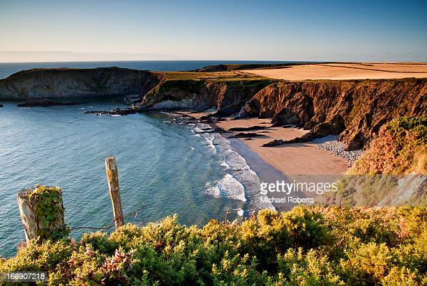 beach on the pembrokeshire coast path - wales stockfoto's en -beelden