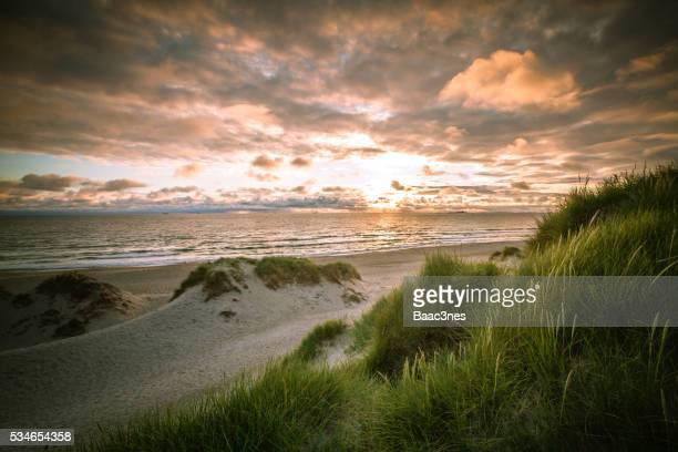 beach on the west coast of norway - スタバンゲル ストックフォトと画像