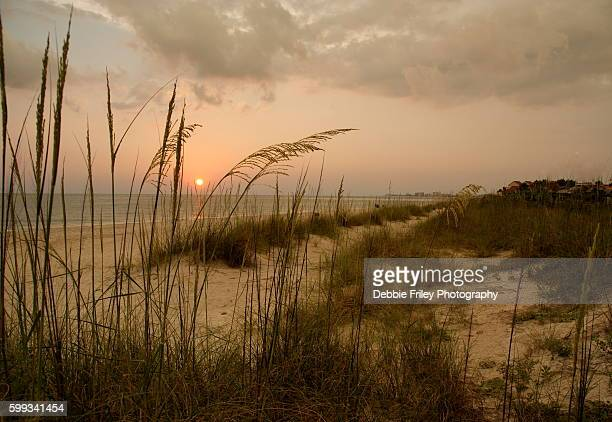 beach paradise among the sea oats - st. petersburg florida stock photos and pictures
