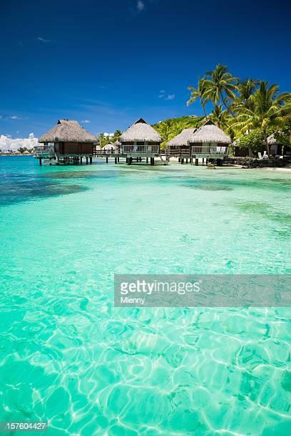 vacaciones de verano playa paraíso cabañas del hotel - polinesia francesa fotografías e imágenes de stock