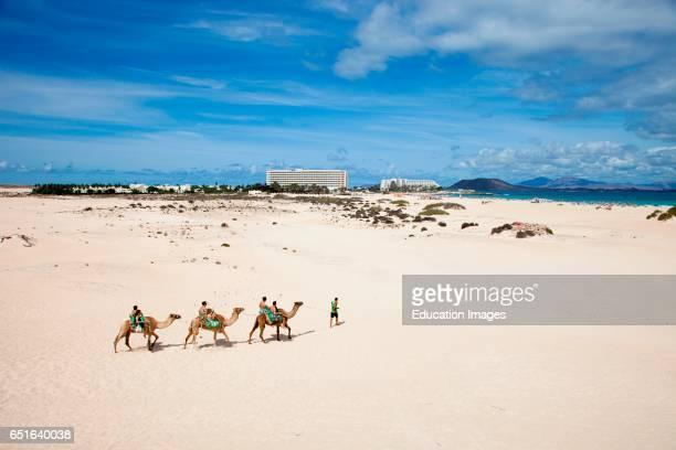 Beach. Parque Natural De Corralejo. Fuerteventura. Canarie.