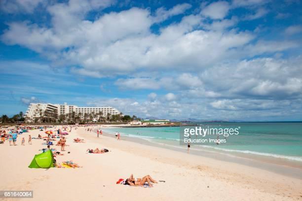Beach Parque Natural De Corralejo Fuerteventura Canarie