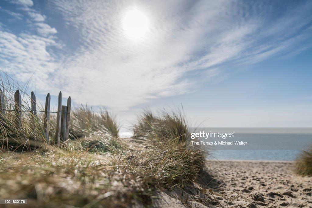 Beach path on the island of Sylt. : Stock-Foto