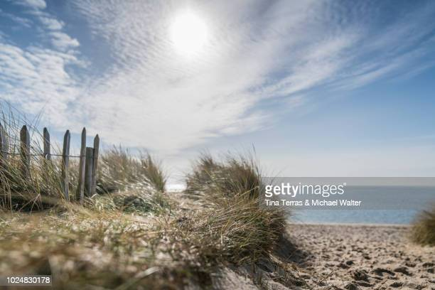 beach path on the island of sylt. - german north sea region stock pictures, royalty-free photos & images
