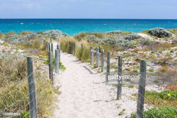 beach path - western australia stock pictures, royalty-free photos & images