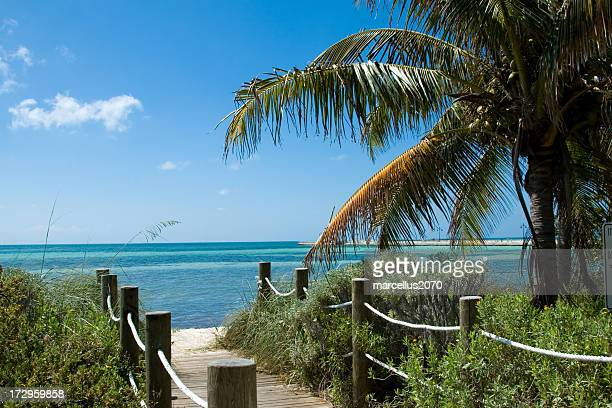 beach pathway - key west stock photos and pictures