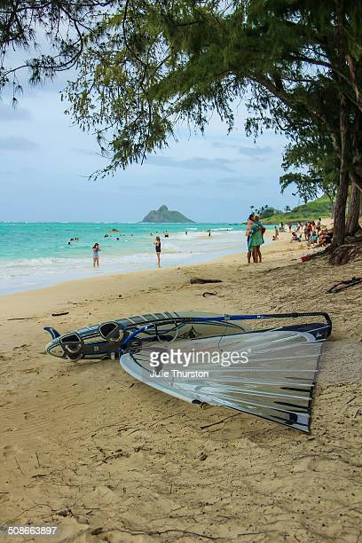 beach people - kailua beach stock photos and pictures