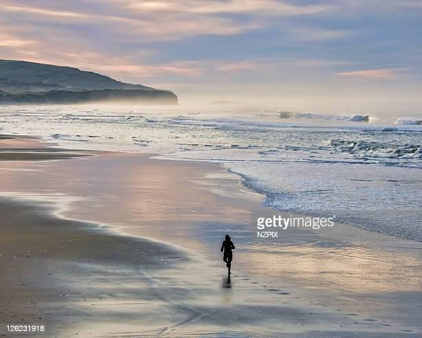 beach - ダニーデン ストックフォトと画像