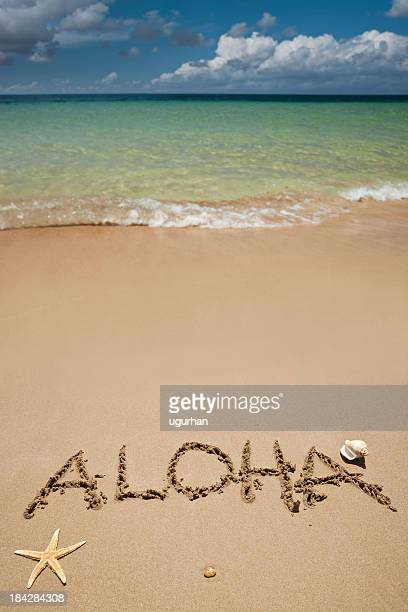 beach - aloha stock pictures, royalty-free photos & images