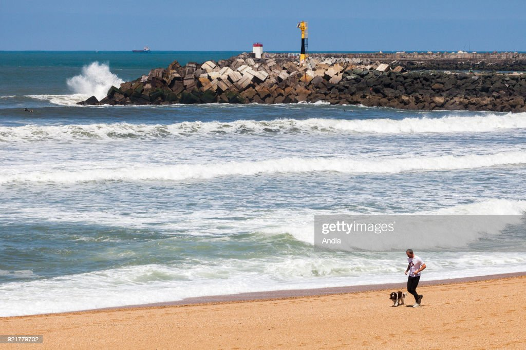 Beach 'plage des Cavaliers' in Anglet (south-western France), May 2015. It's situated to the left of the rip current 'Barre de l'Adour'. It's one of the best surfing spots of the Basque Coast. In the foreground, a man and his dog running on the beach.