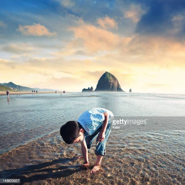 beach play time - oregon coast stock pictures, royalty-free photos & images