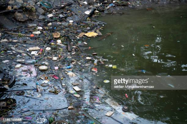 beach pollution. plastic bottles and other trash on river - 水質汚染 ストックフォトと画像