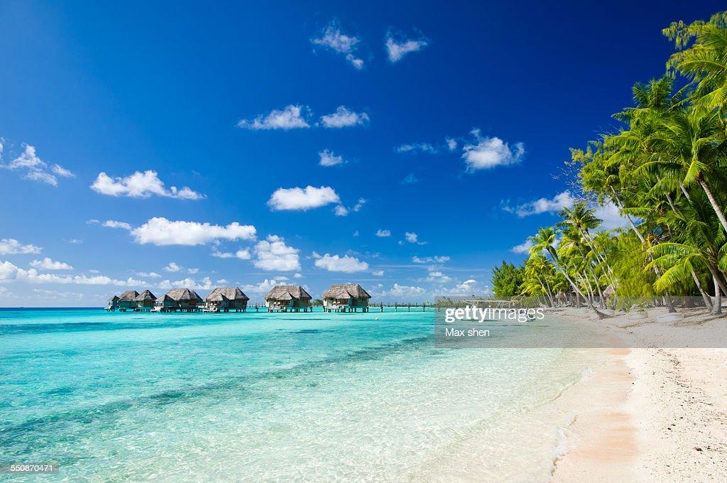 Beach resorts in Tahiti : Stock Photo