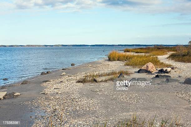 beach sand along the chesapeake bay in fall - williamsburg virginia stock pictures, royalty-free photos & images