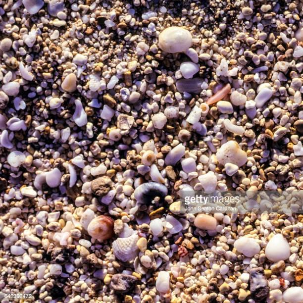 beach sand at waimea bay - waimea bay stock photos and pictures