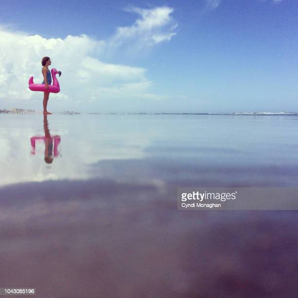 beach scene and flamingo girl amongst the clouds - florida usa stock-fotos und bilder