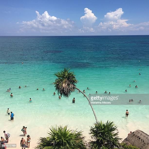 Beach Scene in Mexico