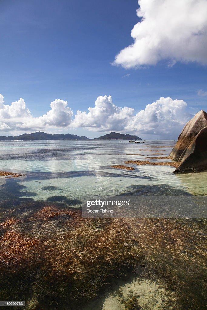 Beach scene on an Indian Ocean Island : Stock Photo