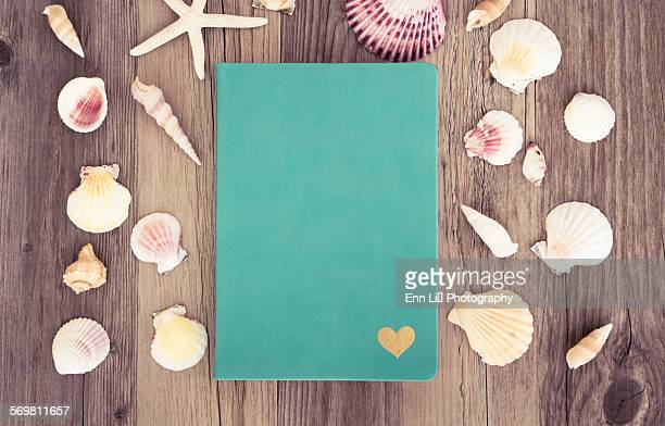 beach scene with writing book - animal internal organ stock photos and pictures