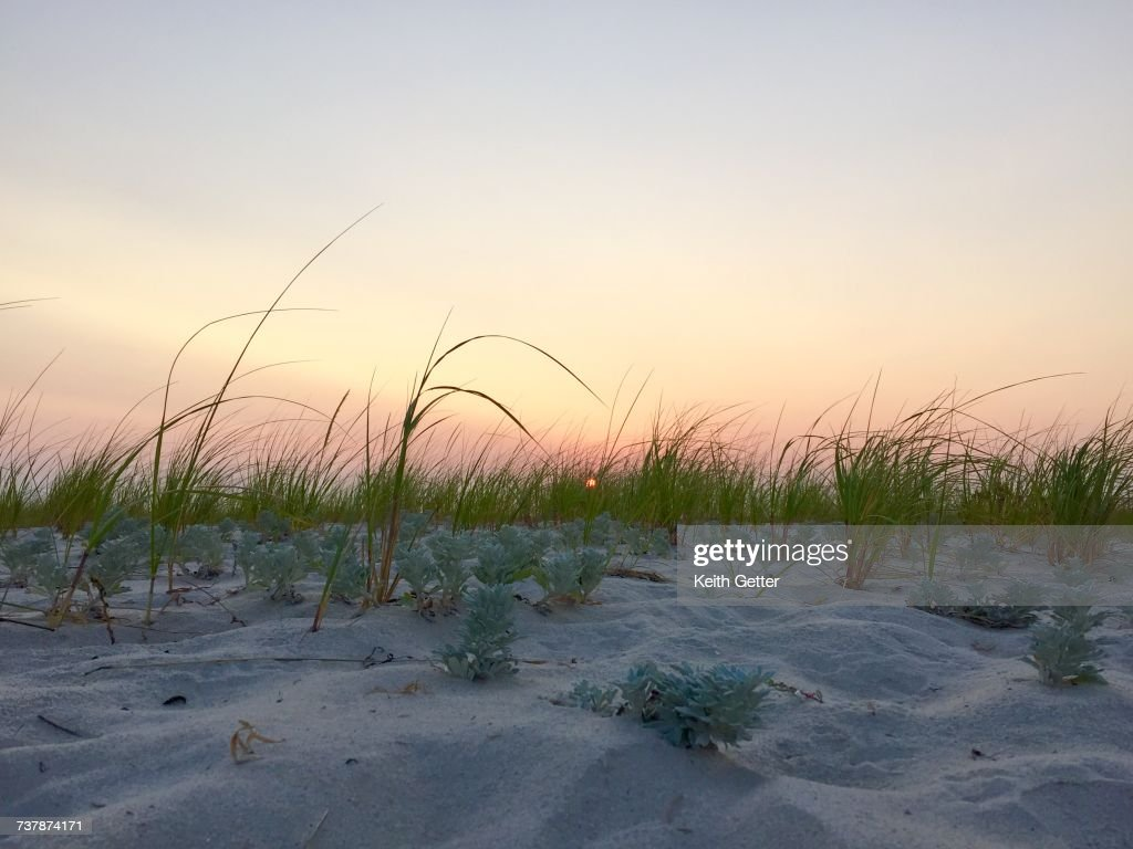 beach scenes stock photo | getty images