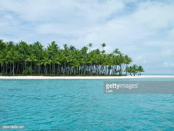 beach scenic - land in sicht stock-fotos und bilder